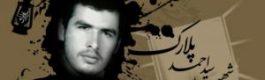 زندگی نامه شهید سید احمد پلارک
