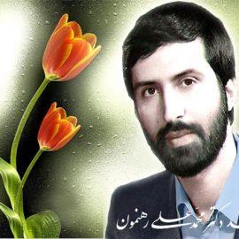 زندگی نامه شهید محمد علی رهنمون