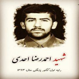 زندگی نامه شهید احمد رضا احدی