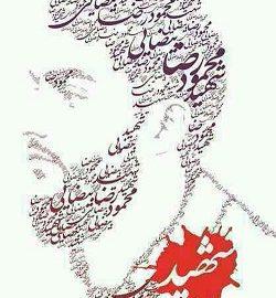 کارکرد محبت حضرت زهرا در بیان شهید محمود رضا بیضایی